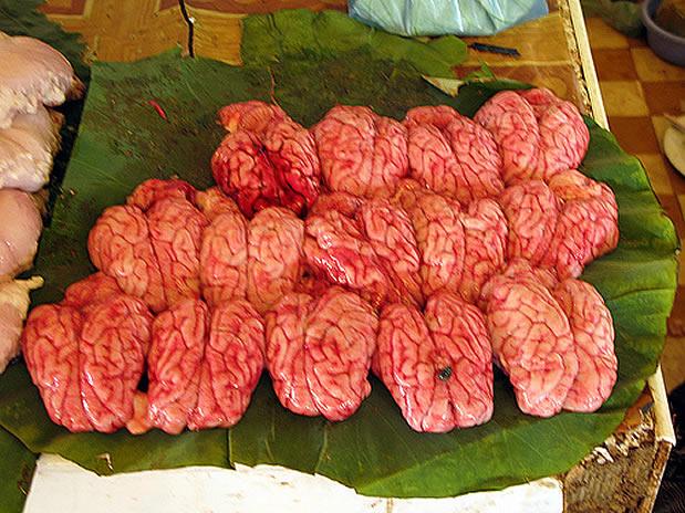 Comidas mais nojentas do mundo - Cerebro de Macaco